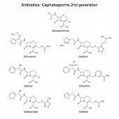 stock photo of antibiotics  - Structural chemical formulas of antibiotics  - JPG