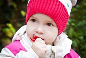 stock photo of wild-brier  - Autumn portrait of cute little girl with briar close - JPG