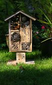 stock photo of stick-bugs  - Wooden insect house decorative bug hotel ladybird and bee home for butterfly hibernation and ecological gardening - JPG