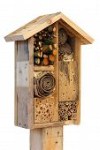foto of stick-bugs  - Wooden insect house decorative bug hotel ladybird and bee home for butterfly hibernation and ecological gardening - JPG