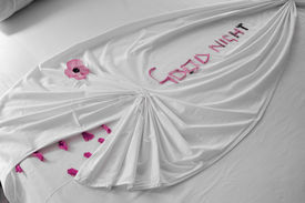 stock photo of goodnight  - a blanket shaped like a fish with flower petals arranged to say goodnight  - JPG