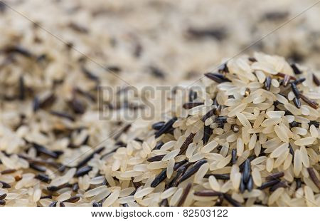 Mixed Rice Background