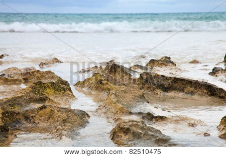 Ocean Shore Background