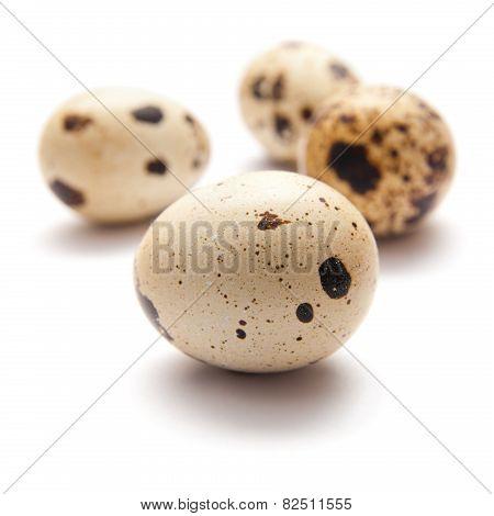Quail Eggs On White Surface