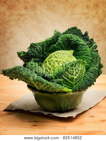 Savoy Cabbage Over Neutral Background