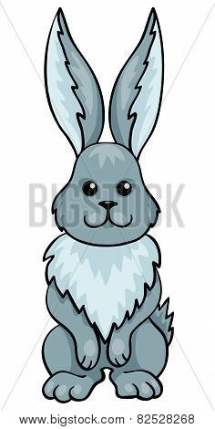 Hare Isolated On White