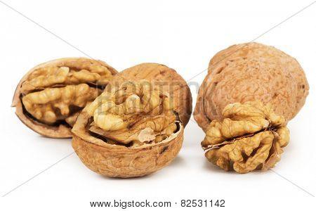 Walnut closeup isolated on white background