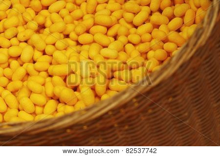 A Lot Of Yellow Cocoon Silkworm In A Basket