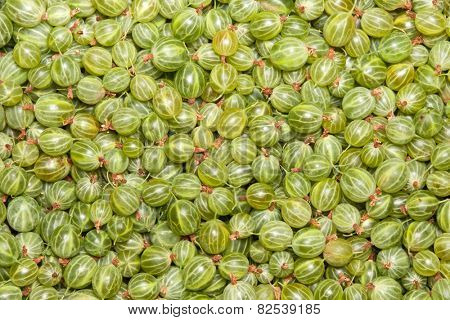 green gooseberry, background
