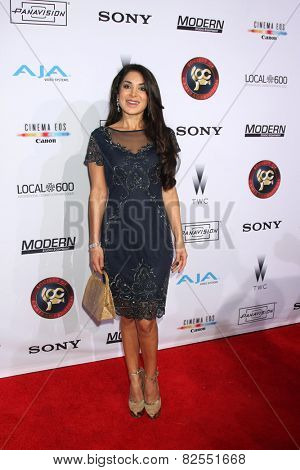LOS ANGELES - FEB 8:  Saye Yabandeh at the 2015 Society Of Camera Operators Lifetime Achievement Awards at a Paramount Theater on February 8, 2015 in Los Angeles, CA