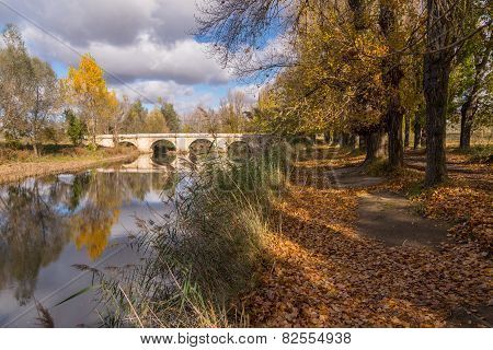 Walking towards the stone bridge over the river Carrión, Palencia