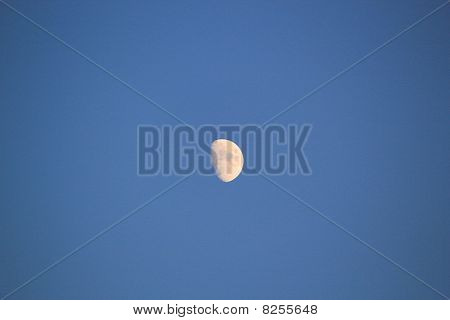 Moon In The Blue Night