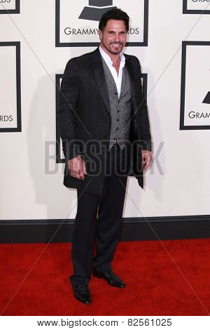 LOS ANGELES - FEB 8:  Don Diamont at the 57th Annual GRAMMY Awards Arrivals at a Staples Center on February 8, 2015 in Los Angeles, CA