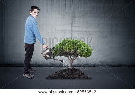 boy watering the tree