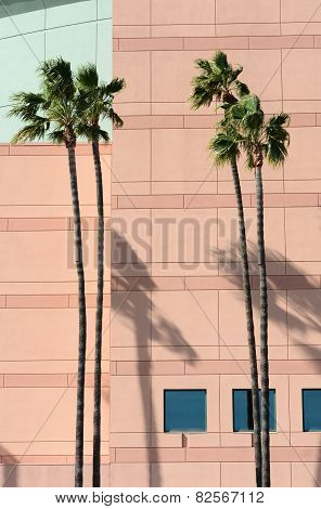 Building Detail Honda Center