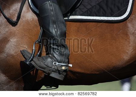 Close Up Of Rider Leg With Spur