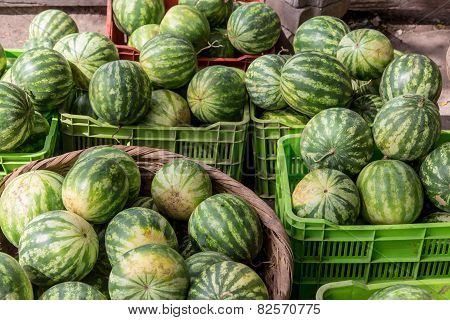 Watermelon Group From A Marketplace