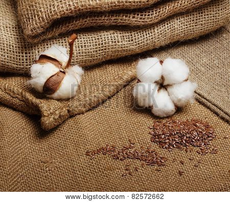 Cotton plant flower with flax seeds on hessian sack textile background