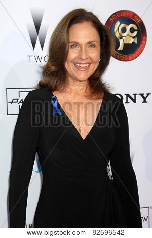 LOS ANGELES - FEB 8:  Erin Gray at the 2015 Society Of Camera Operators Lifetime Achievement Awards at a Paramount Theater on February 8, 2015 in Los Angeles, CA