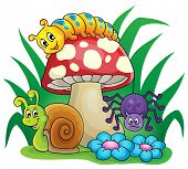 foto of toadstools  - Toadstool with small animals  - JPG