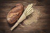 image of whole-wheat  - fresh bread and wheat on the wooden - JPG