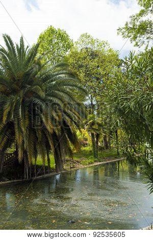 City Pond