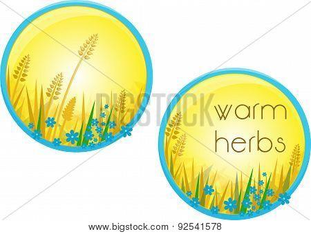 Warm Herbs