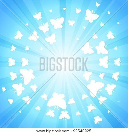 Blue shine butterfly background