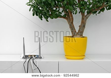 Internet Router And Flower Pot On White Shelf In Bright Interior