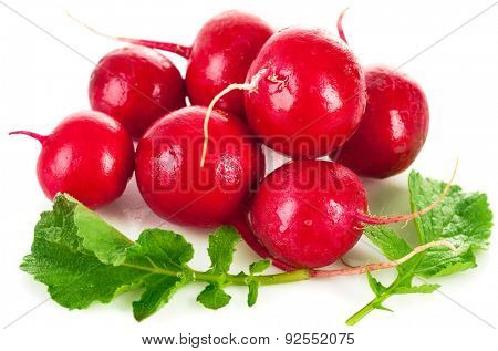 Fresh radish with green leaf. Isolated on white background