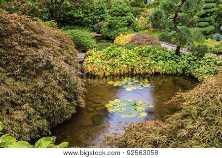 Quiet little pond with lilies. Scenic decorative park Butchart Gardens on Vancouver Island, Canada