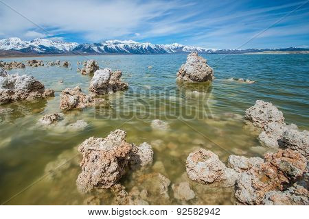 Mono Lake Tufa Up Close