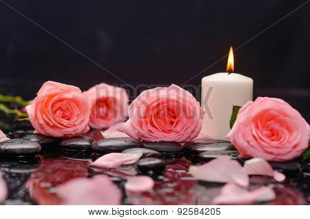 pink rose ,petals with pink candle and therapy stones