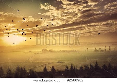 Countryside Landscape I