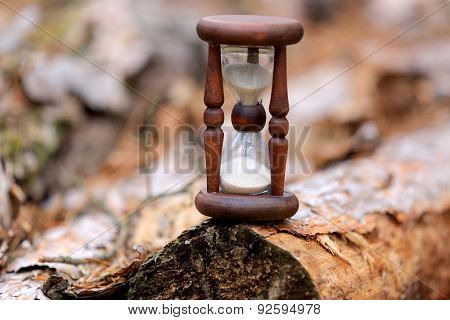 abstract hourglass on pine log surface