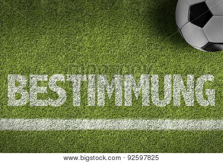 Soccer field with the text: Determination (in German)