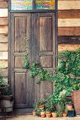 stock photo of creeper  - Green creeper plant growing on wooden wall and a door of a house - JPG