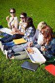 pic of eat grass  - education - JPG