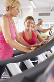 picture of encouraging  - Woman On Running Machine In Gym Encouraged By Personal Trainer - JPG
