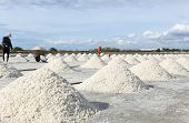 foto of salt mine  - People making a pile of salt in the salt pan in Thailand - JPG