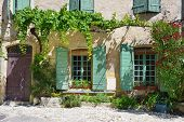 pic of plant pot  - France Provence - JPG