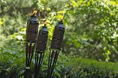 image of citronella  - Bamboo citronella torches to repell mosquitoes and other insects - JPG