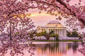 stock photo of memorial  - Washington - JPG