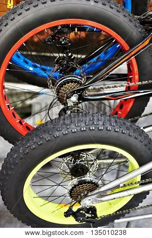 Rear Wheel With Large Tire By Bike