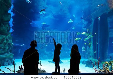 Family with child visitors a large oceanarium