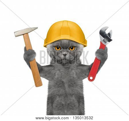 cat builder holding tools in its paws -- isolated on white