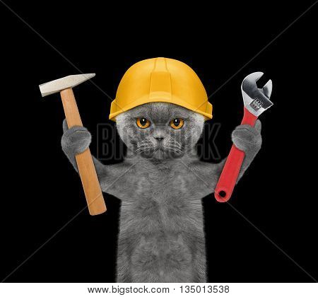 cat builder holding tools in its paws -- isolated on black