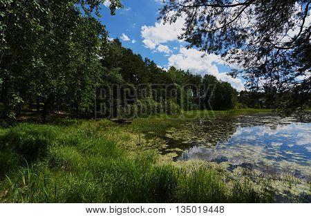 Pond in south Bohemia named Zdarsky near Sevetin village