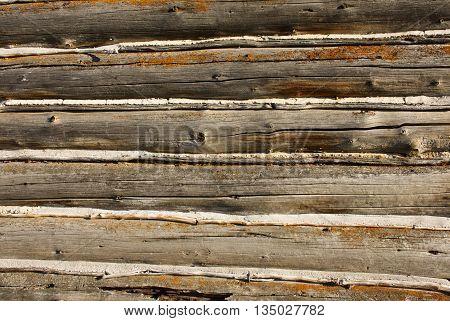 wooden log cabin with antique withered logs