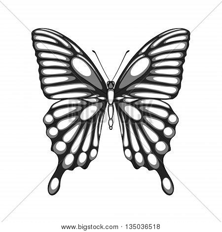 beautiful black and white butterfly. with watercolor effect. Perfect for background greeting cards and invitations of the wedding birthday Valentine's Day